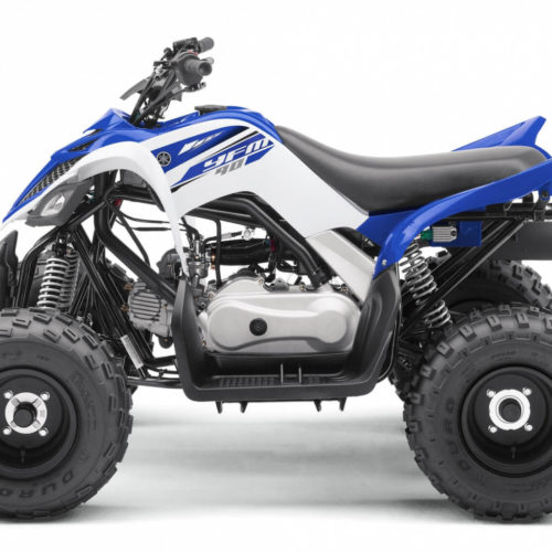 Yamaha Raptor 90 R